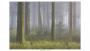 2020-05-19-097-Freek-Kooij
