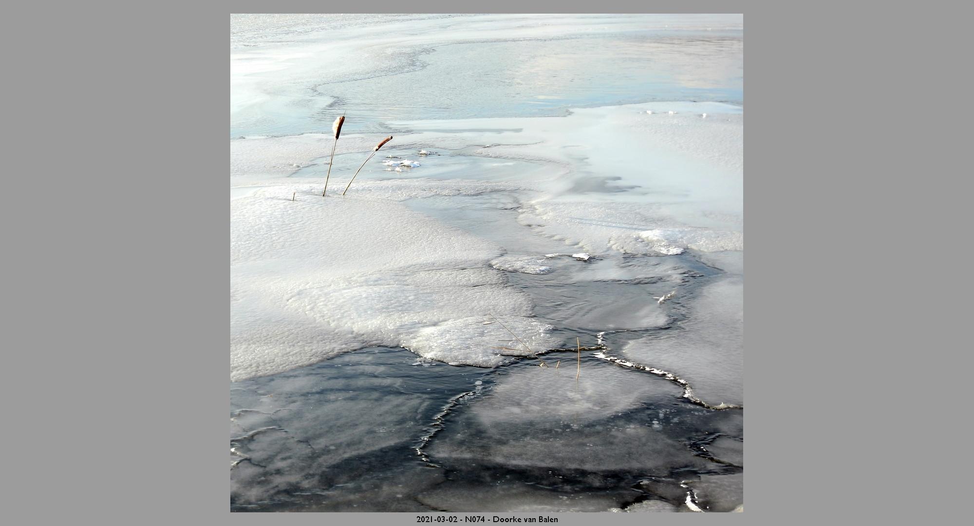 2021-03-02-N074-Doorke-van-Balen